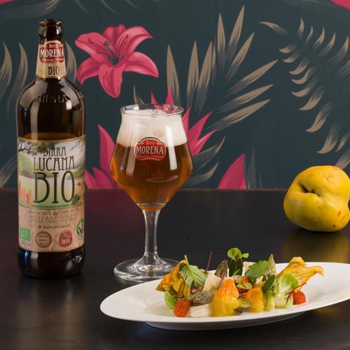 Lucana Bio-Vegan 33cl cassa da 12 pz - 5,8 % alc. vol.- Craft Beer